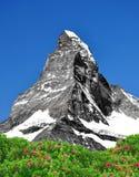 Matterhorn - Swiss Alps. Beautiful mountain Matterhorn - Swiss Alps Royalty Free Stock Photos