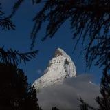 Matterhorn toppmöte som ses till och med träd Arkivfoton