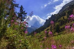 Matterhorn, Zermatt, Suiza Fotos de archivo