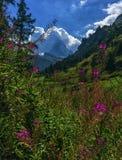 Matterhorn, Zermatt, Switzerland Royalty Free Stock Photography