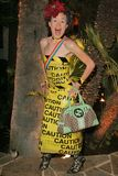 Matthew Fashion Royalty Free Stock Images