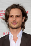 Matthew Gray Gubler  Stock Image