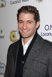 , Matthew Morrison. Matthew Morrison  at An Evening With Leona Lewis And Friends Benefiting Hopefield Animal Sanctuary, Private Location, Beverly Hills, CA 11-19 Royalty Free Stock Photo