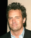 matthew perry Obrazy Royalty Free