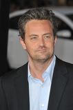 Matthew Perry royaltyfria bilder