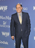 Matthew Weiner Royalty Free Stock Photo