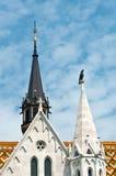 Matthias Church ist eine Römisch-katholische Kirche im romanischen Schweinestall Stockfoto