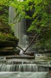 Matthiessen Falls. Royalty Free Stock Images