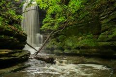 Matthiessen Falls. Royalty Free Stock Image