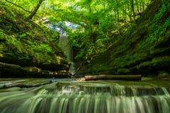 Matthiessen Falls. Stock Images