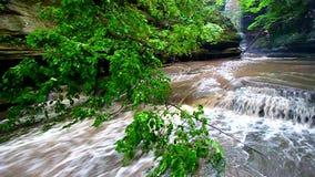 Matthiessen State Park Cascade Illinois stock video footage