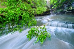 Matthiessen State Park Waterfall Illinois Stock Photography