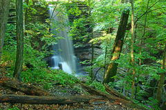 Matthiessen State Park Waterfall Illinois. Beautiful Lake Falls seen through the woodlands of Matthiessen State Park in central Illinois Stock Photo