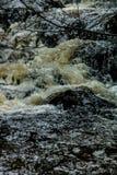 Mattie Mitchell Creek, Gros Morne National Park, Newfoundland, C. Anada royalty free stock photography