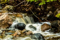 Mattie Mitchell Creek, Gros Morne National Park, Newfoundland, C. Anada royalty free stock images