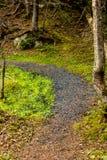 Mattie Mitchell Trail, Gros Morne National Park, Newfoundland, C. Anada stock image