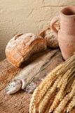 mattillbringarewine Fotografering för Bildbyråer