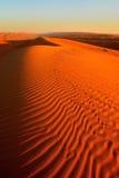 Mattina alle sabbie di Wahiba nell'Oman Fotografie Stock Libere da Diritti