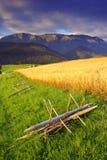 Mattina in alto Tatras (Vysoké Tatry) Immagine Stock