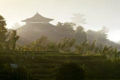 Mattina in Bali Immagini Stock Libere da Diritti