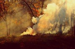 Mattina calda di autunno Fotografie Stock Libere da Diritti