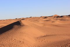 Mattina del deserto immagine stock