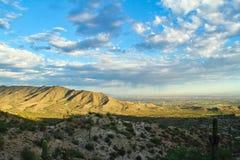 Mattina del deserto di Sonoran Immagine Stock Libera da Diritti