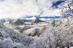 Mattina della montagna dello Snowy Immagine Stock