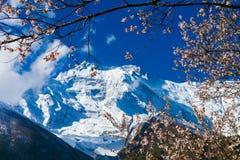 Mattina della natura delle montagne dei paesaggi nell'ambito del punto di vista tre Fondo del paesaggio di trekking della montagn Fotografia Stock