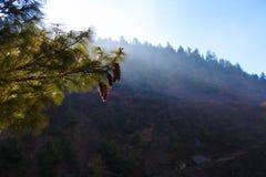 Mattina della natura delle montagne di Nepals dei paesaggi nell'ambito del punto di vista tre Fondo del paesaggio di trekking del Fotografia Stock Libera da Diritti