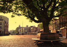 Mattina di Amsterdam in primavera immagini stock libere da diritti