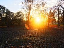 Mattina di autunno fotografia stock