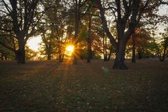 Mattina di autunno a Praga fotografie stock libere da diritti