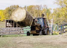 Mattina di autunno sull'azienda agricola canadese Immagine Stock Libera da Diritti