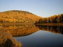 Mattina di autunno sulla banca del fiume di Ilim in Russia Fotografie Stock Libere da Diritti