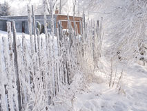 Mattina di congelamento Fotografia Stock