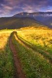 Mattina di estate in alto Tatras (Vysoké Tatry) Fotografia Stock