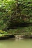 Mattina di estate in canyon di Illinois Fotografia Stock