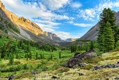 Mattina di estate in valle della montagna Immagine Stock Libera da Diritti