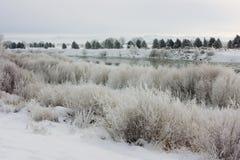 Mattina di inverno Fotografie Stock Libere da Diritti