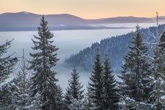 Mattina di inverno con foschia in montagne Fotografia Stock Libera da Diritti