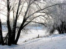 Mattina di inverno sulla sponda del fiume fotografia stock