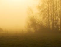 Mattina di novembre fotografie stock libere da diritti