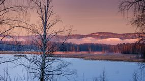 Mattina di Snowy vicino alle montagne Fotografie Stock