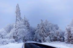 Mattina gelida di inverno immagini stock libere da diritti