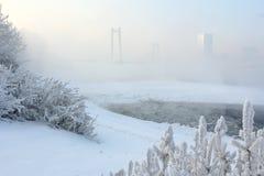 Mattina gelida di inverno sulla sponda del fiume Immagine Stock