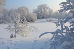 Mattina gelida di inverno sulla sponda del fiume Fotografie Stock