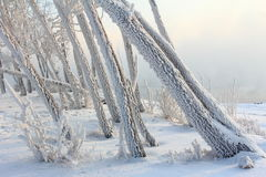 Mattina gelida di inverno sulla sponda del fiume Fotografie Stock Libere da Diritti