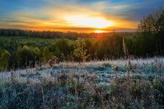 Mattina gelida nella foresta di autunno Fotografie Stock