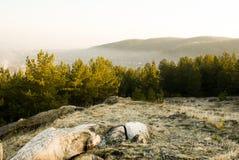 Mattina La foresta e le montagne Immagini Stock Libere da Diritti